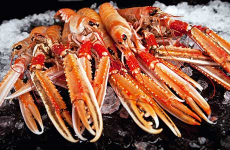 The standard of fresh seafood in Scotland is second to none, say restaurateurs and suppliers.