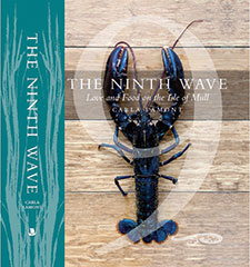 •  The cover of The Ninth Wave publication.