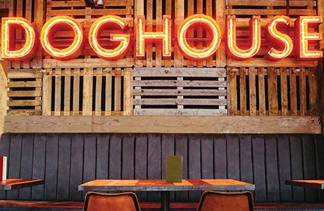 Doghouse, Brewdog