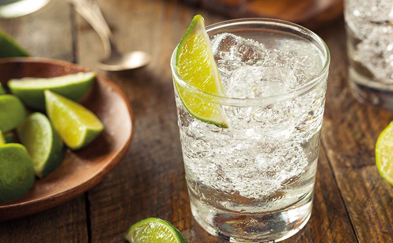 Gin & Tonic pic2