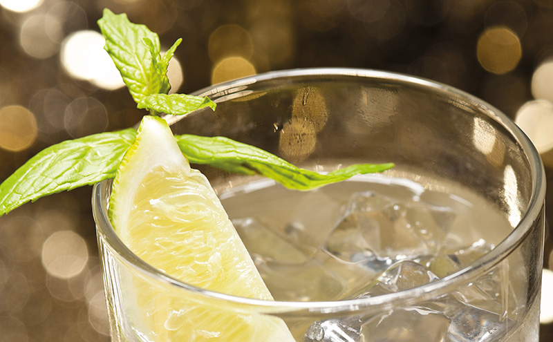 005_gin-and-ginger