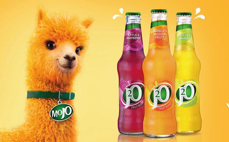 Mojo Campaign