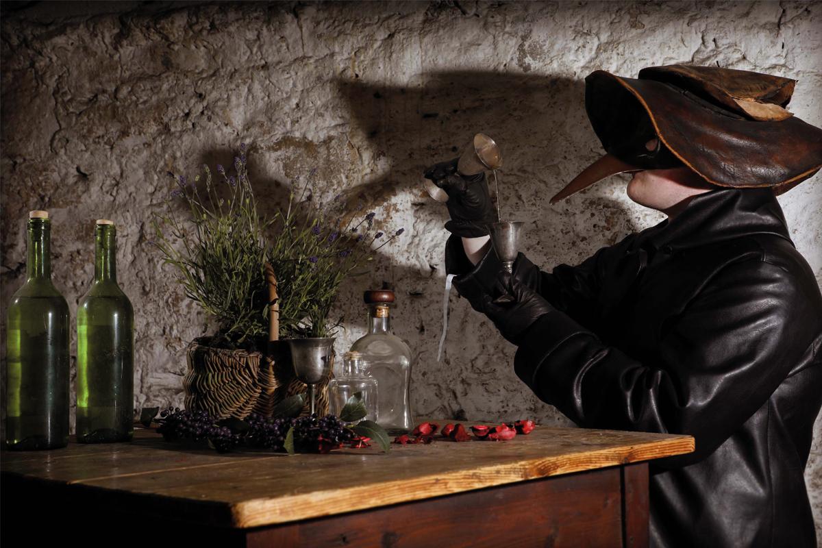 gin-tasting-tour