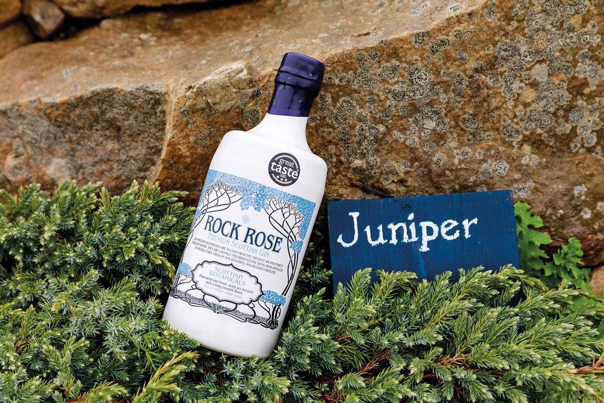 Rock Rose, Dunnet Bay Distillers